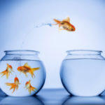 5 Minute Mentoring: Leading Change More Effectively